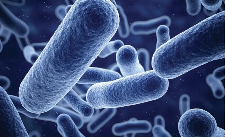 A Guide to Antimicrobial Coatings